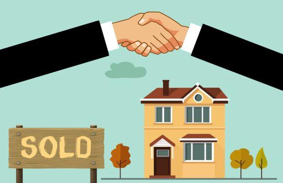Die aktuelle Lage am Immobilienmarkt in Deutschland