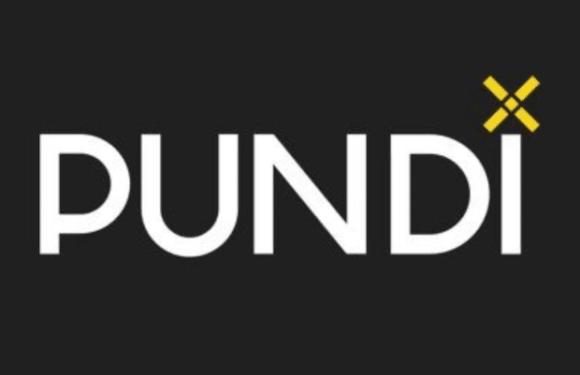 Die Kryptowährung Pundix (NPXS) kaufen